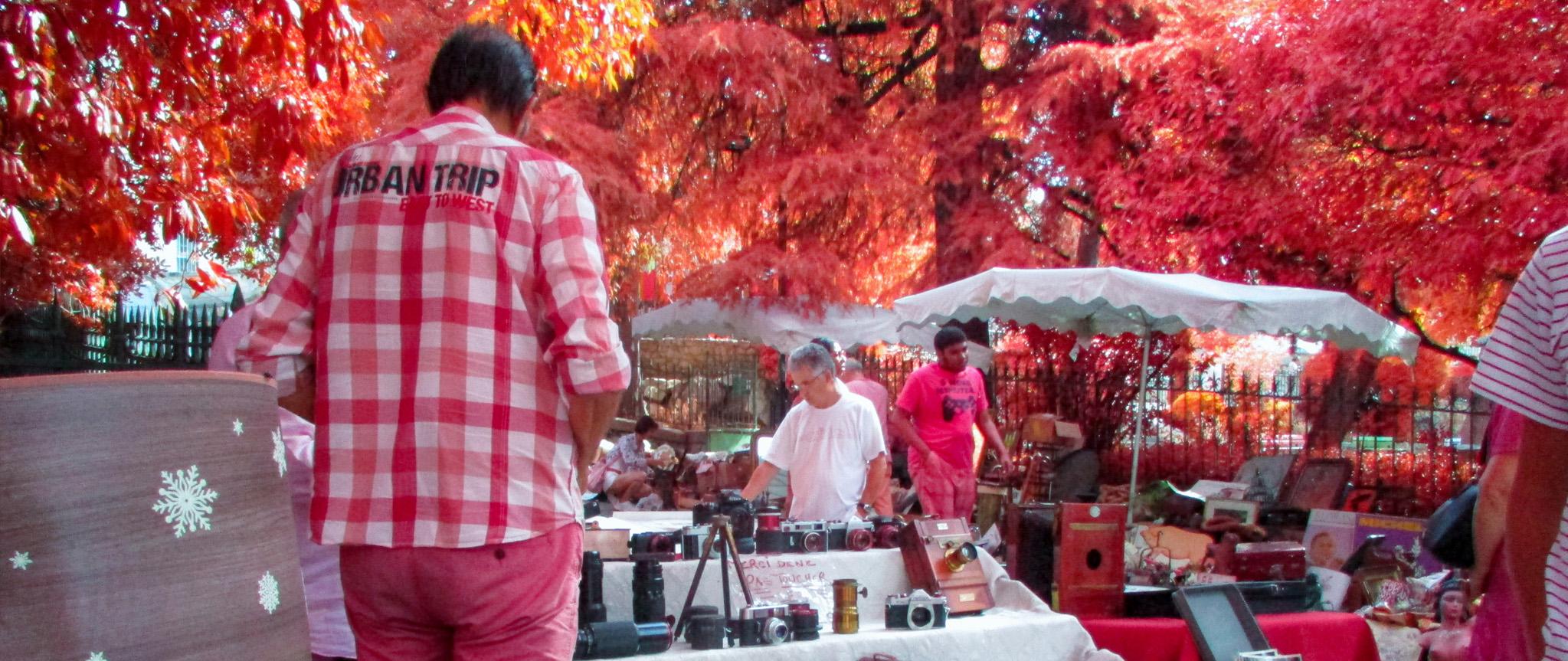 Arles en Infrarouge avec le filtre IRChrome